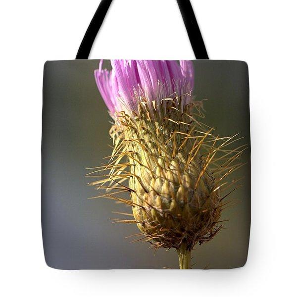 Thistle Tote Bag by Joseph Skompski