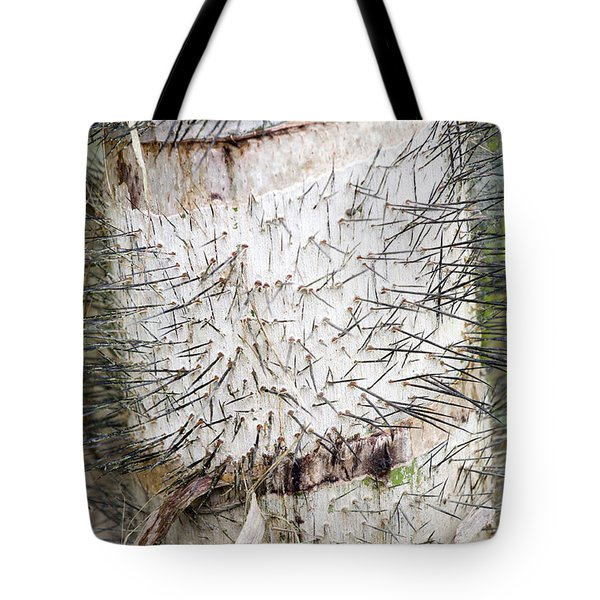 Thorn Tree Tote Bag by Aivar Mikko
