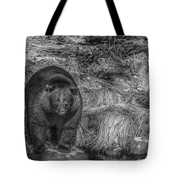 Thornton Creek Black Bear Tote Bag