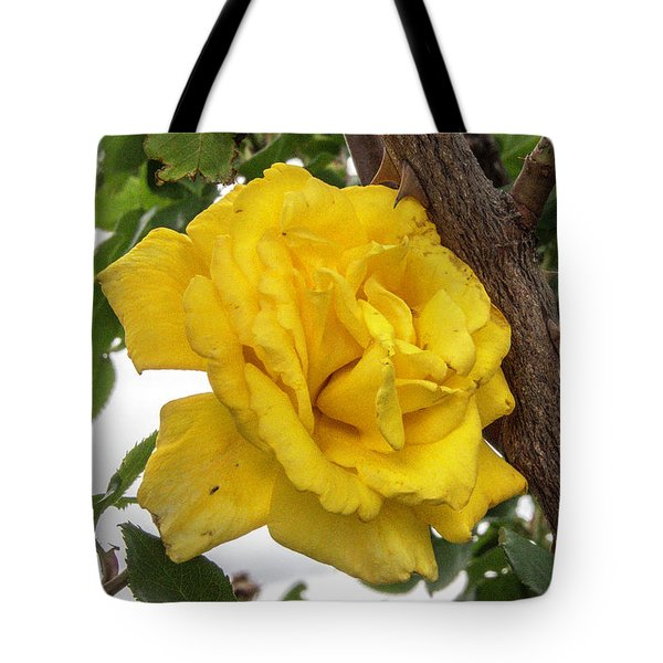 Thorny Love Tote Bag by Charles Ables