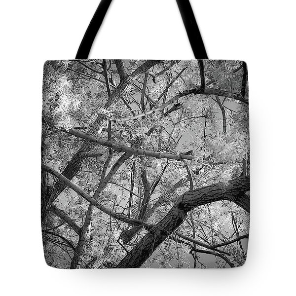 Those Branches -  Tote Bag
