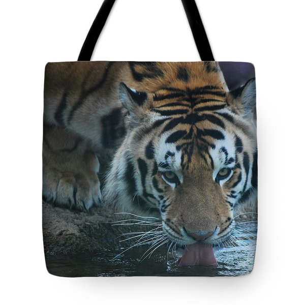 Tote Bag featuring the photograph Those Eyes by Maggy Marsh
