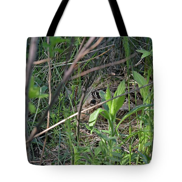 Those Velvet Eyes That Betray Its Camouflage Of The Nesting Woodcock Tote Bag