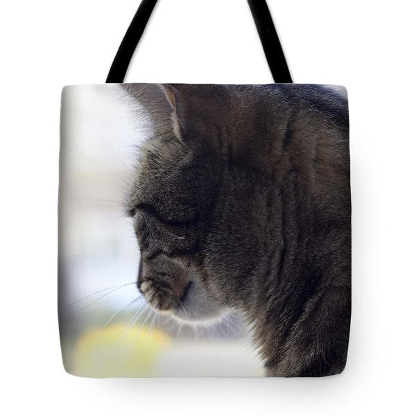 Tote Bag featuring the photograph Longing... by Helga Novelli