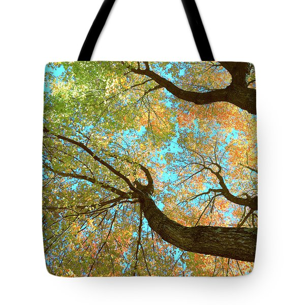 Thousands Of Voices Tote Bag by Todd Breitling