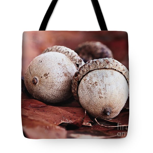 Three Acorns And Autumn Oak Leaves Tote Bag
