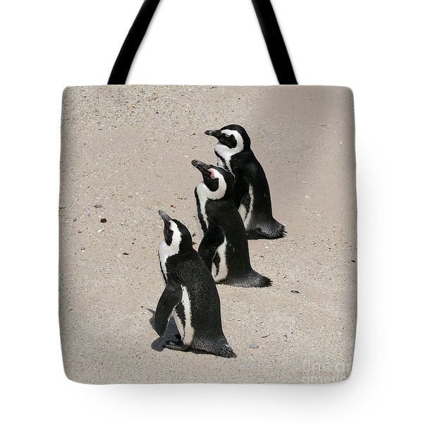Three African Penguins Tote Bag