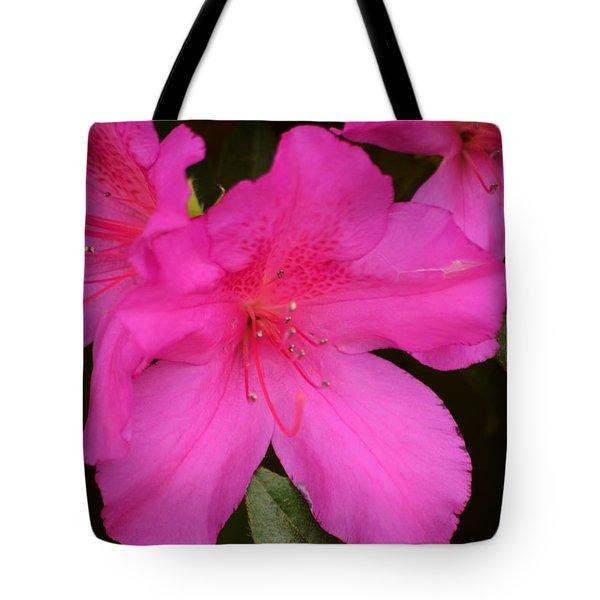 Three Azaleas Tote Bag by Warren Thompson