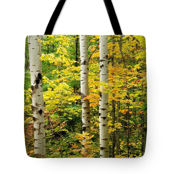 Three Birch Tote Bag