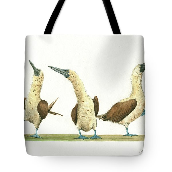 Three Blue Footed Boobies Tote Bag by Juan Bosco