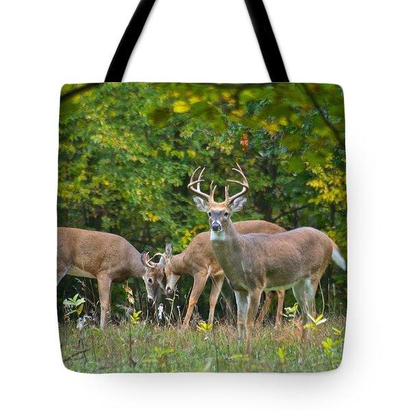 Three Bucks_0054_4463 Tote Bag