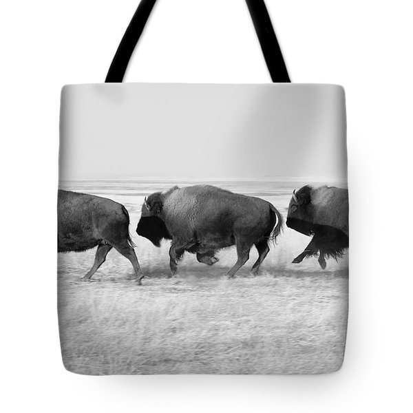 Three Buffalo In Black And White Tote Bag by Todd Klassy