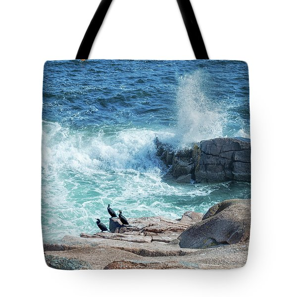 Three Cormorants At Monument Cove, Acadia National Park Tote Bag