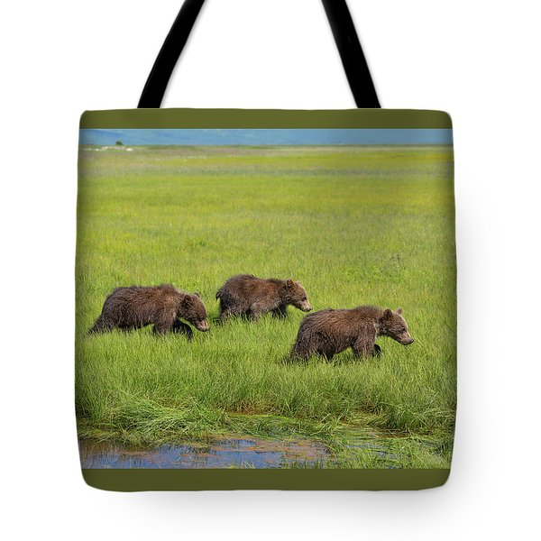 Three Cubs Moving On Tote Bag