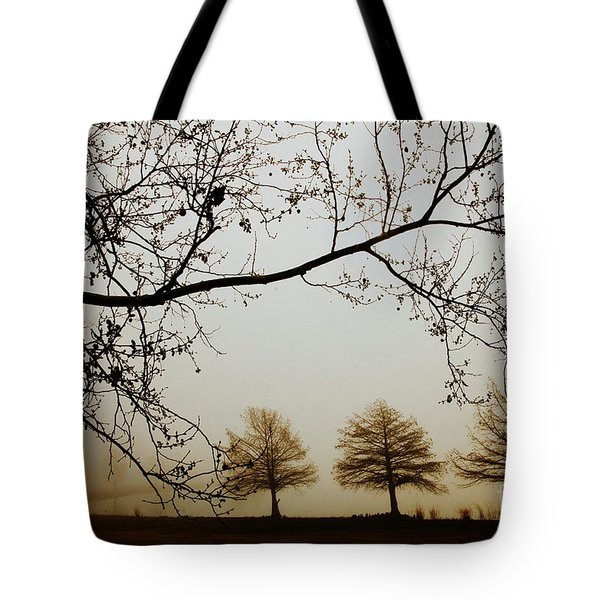 Tote Bag featuring the photograph Three Cypress In The Mist by Iris Greenwell
