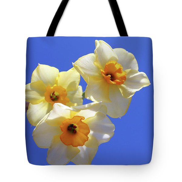 Tote Bag featuring the photograph Three Daffodils by Judy Vincent