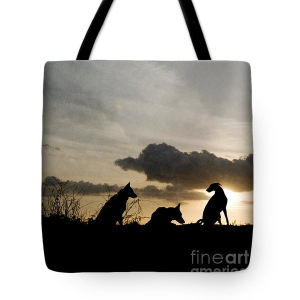 Three Dogs At Sunset Tote Bag
