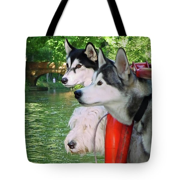 Three Dogs On A Boat Tote Bag by Terri Waters