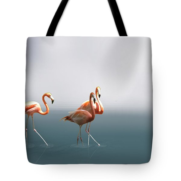 Three Flamigos Tote Bag