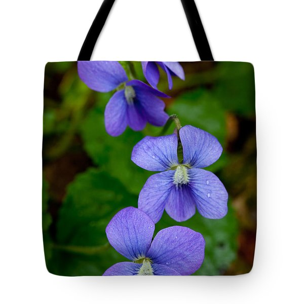 Three For The Show Tote Bag