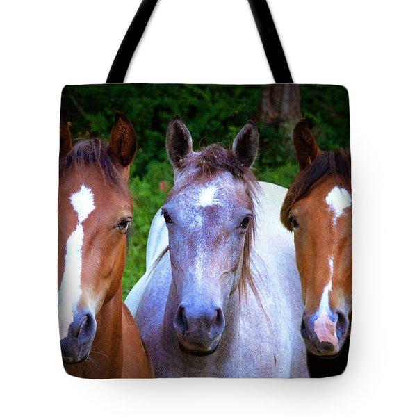 Three Friends Tote Bag