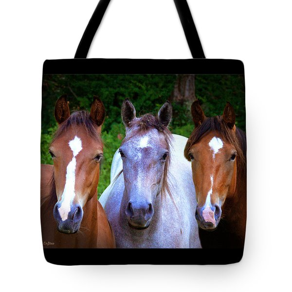 Tote Bag featuring the photograph Three Friends by Michele A Loftus