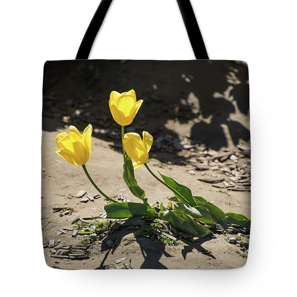 Three Gold Memories Tote Bag