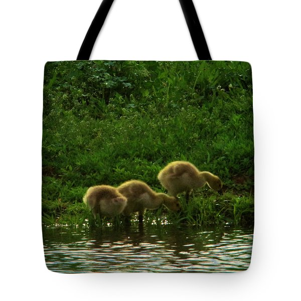 Three Gosling Shore Side Tote Bag