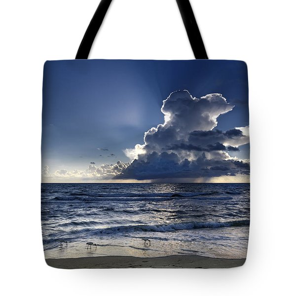 Tote Bag featuring the photograph Three Ibises Before The Storm by Steven Sparks