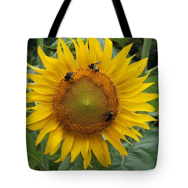 Tote Bag featuring the photograph Three Is A Crowd by Virginia Coyle