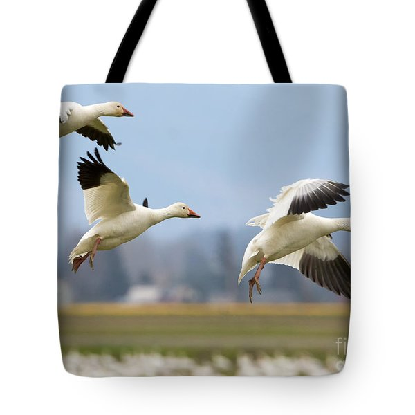 Three Landing Tote Bag by Mike Dawson