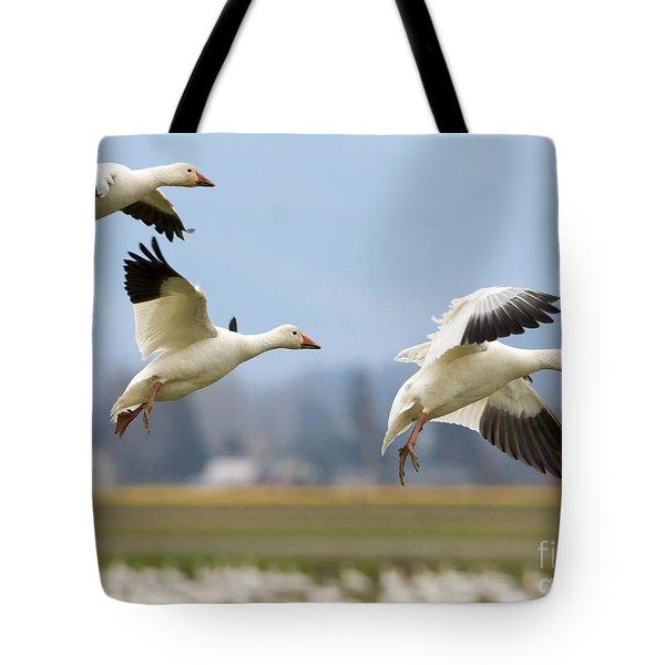 Three Landing Tote Bag