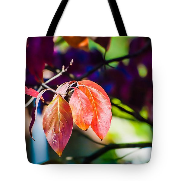 Tote Bag featuring the photograph Three Leaves - 9583 by G L Sarti