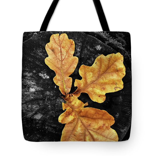 Three Leaves On Black Tote Bag