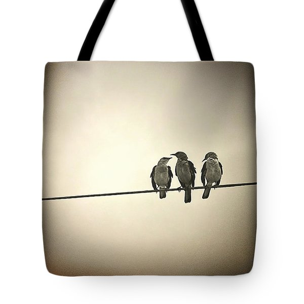 Three Little Birds Tote Bag by Trish Mistric