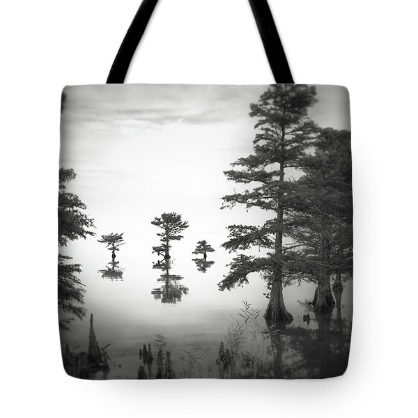 Three Little Brothers Tote Bag by Eduard Moldoveanu