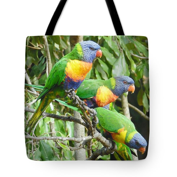 Three Lorikeets Sitting In A Tree Tote Bag