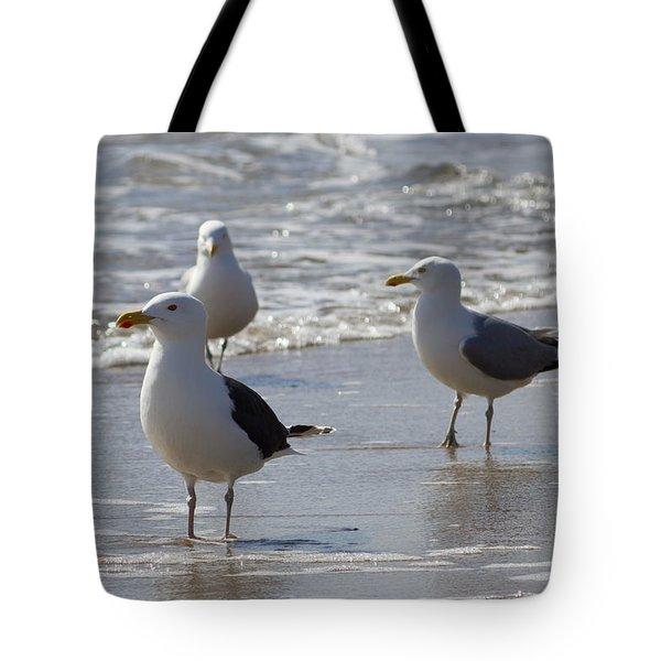 Three Of A Kind - Seagulls Tote Bag