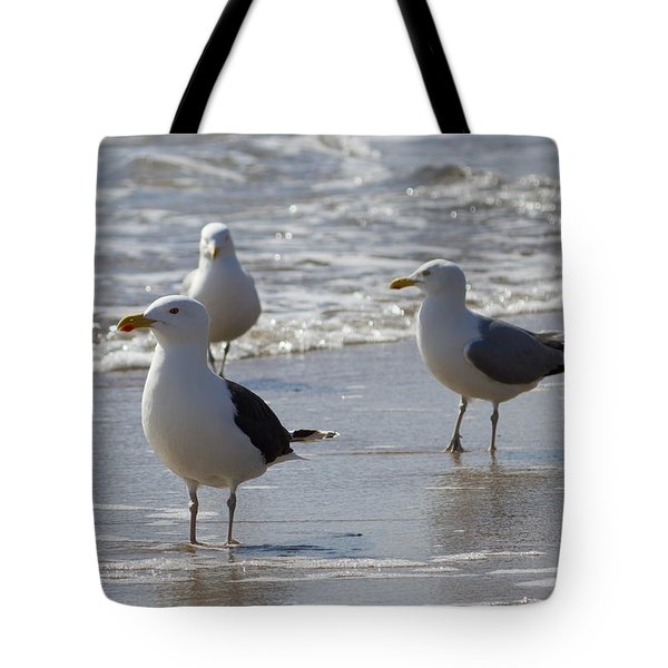 Three Of A Kind - Seagulls Tote Bag