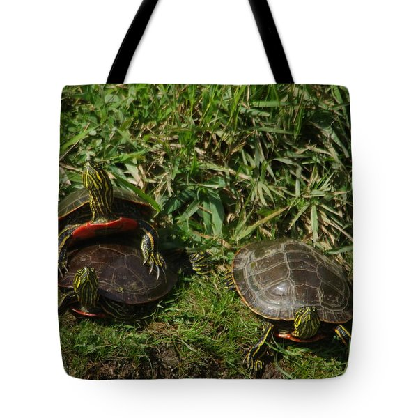 Three Painted Turtles Tote Bag