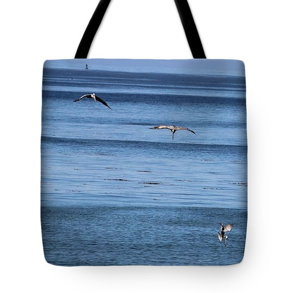 Three Pelicans Diving Tote Bag