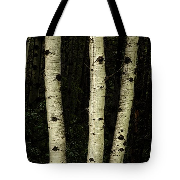 Tote Bag featuring the photograph Three Pillars Of The Forest by James BO Insogna