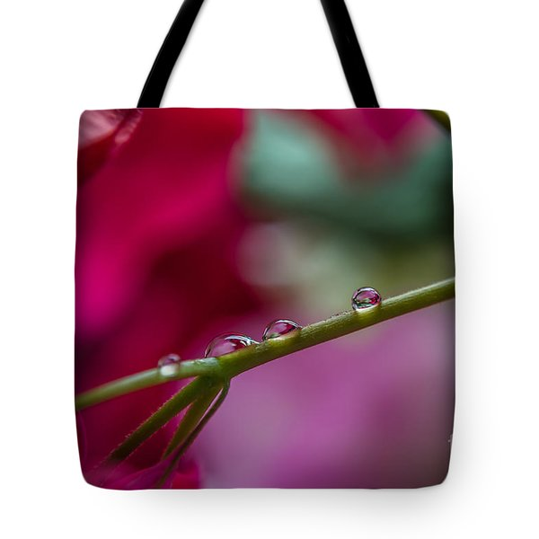 Three Reflecting Drops Tote Bag