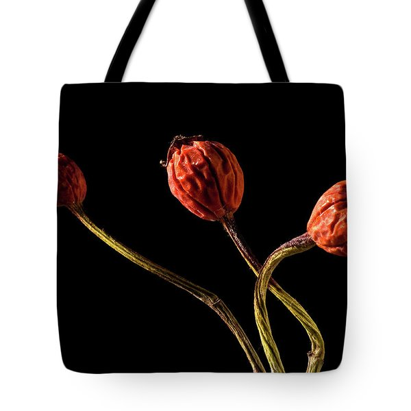 Three Rose Hips Tote Bag