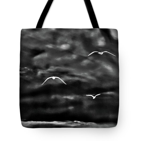 Three Seagulls Tote Bag
