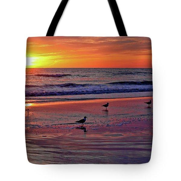 Three Seagulls On A Sunset Beach Tote Bag