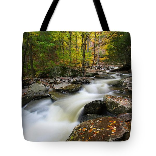 Three Seconds In Fall Tote Bag