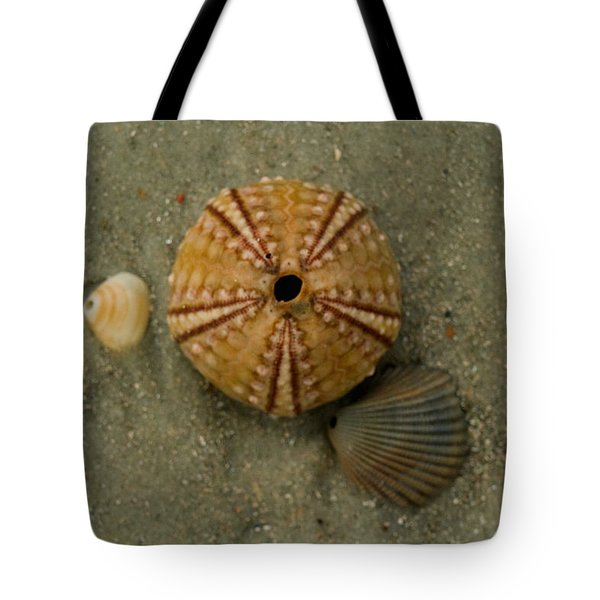 Three Shell Study Tote Bag