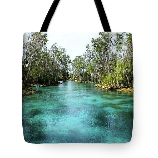 Three Sisters Springs Long View Tote Bag