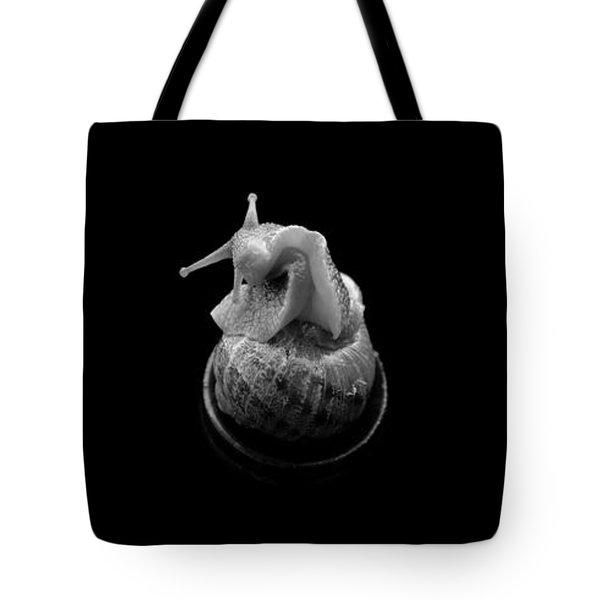 Three Snails Tote Bag